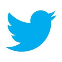 Twitternouveaulogo